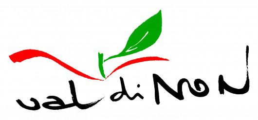 www.visitvaldinon.it